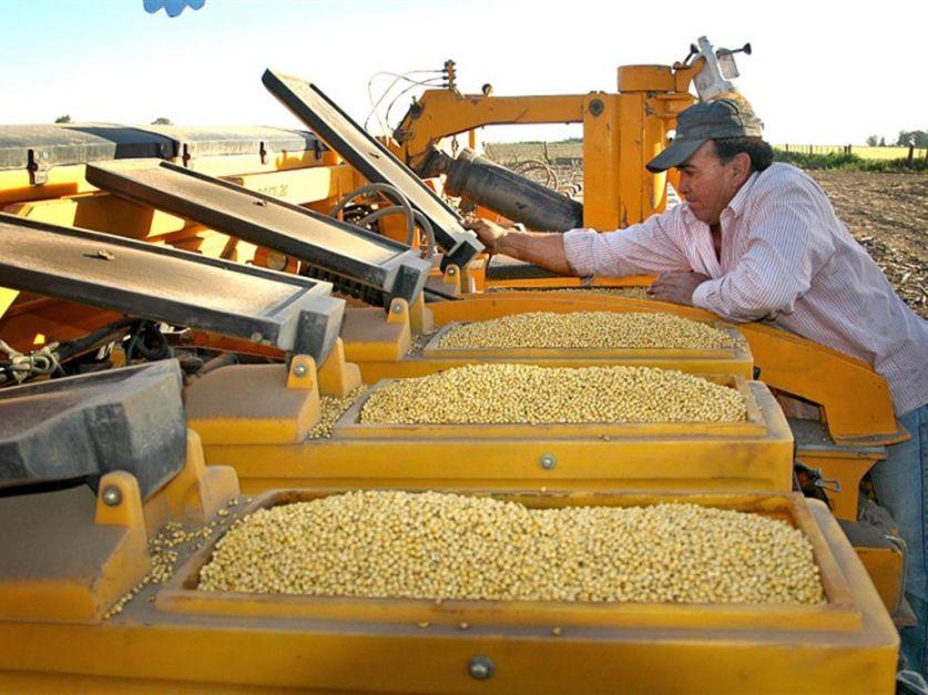 Resultado de imagen para EE.UU. pedirá a Argentina agilizar la aprobación para patentar semillas
